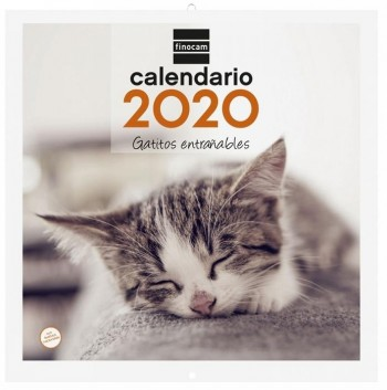 Calendario pared FINOCAM 300 x 300 mm. imagenes gatitos entrañables 2020